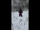 Шерстяной волчара_3