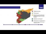 Хроники побед сирийской армии и российских ВКС