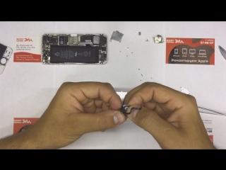 Замена дисплейного модуля на iPhone 5S