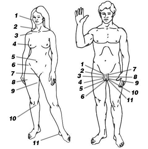 Зоны для массажа возбуждающего на секс