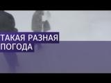 В Москве не будет снега в новогоднюю ночь