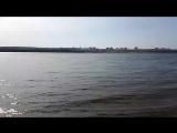 Пляж на Острове Сарпинский. Кировский район. ост. электрички Руднева. Все сюда. Здесь РАЙ