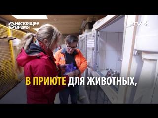 Эстонские кандидаты в депутаты поработали с народом