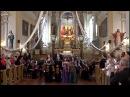 2017 08 20 Koncertas Kavarske: Baltijos muzikos akademijos simfoninis orkestas, Guostė