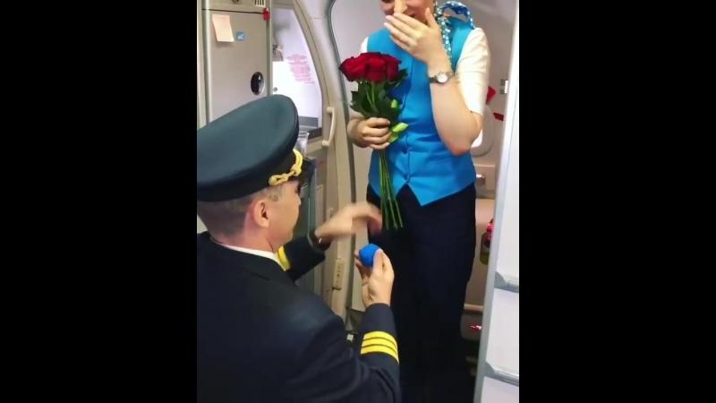Пилот сделал предложение стюардессе