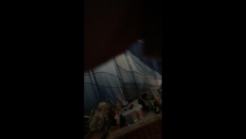 СК WBG SPARTA Выборгская страйкбольная команда — Live