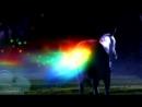 [MFV] Slashcon SPN trailer