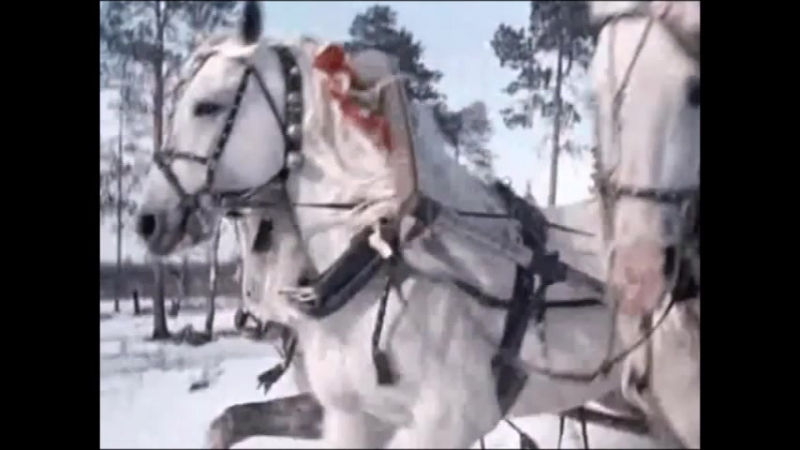 А.ШАПИРО-НОВЫЙ ГОД монтаж НЕЛИКС МУРАВЧИК