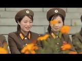 Корейцы жгут. Группа крови на корейском