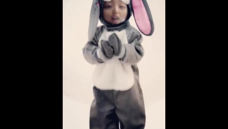 리듬감 대단한 토끼 🐰 rhythmicbunny