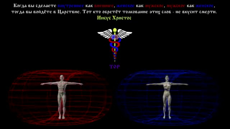 Матрица Сознания (ЗОДИАК)