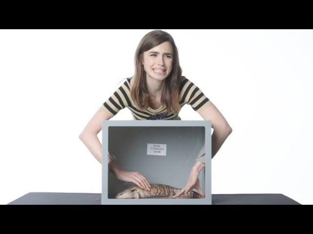 Lily Collins Touches a Hedgehog, Cockroaches Other Weird Stuff | Vanity Fair
