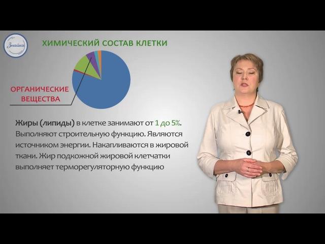 Биология 8 Химический состав и жизнедеятельность клетки