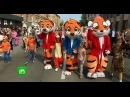На фестивале День тигра во Владивостоке устроили костюмированные шествия