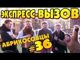 Экспресс-вызов #36 - Абрикосовцы