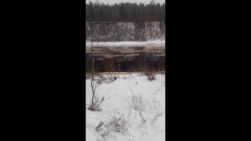 Река Двина возле дома г.Новополоцк