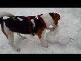 Кузя и снеговик. Бавария