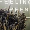 FEELING GREEN Lipetsk