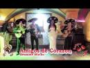 Amigos (Agave) - Camisa Negra