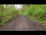 Walking in the Woods. Episode 2 - 1.5 HRS - Virtual Hike, Relaxing Sound of Nature