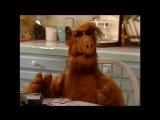 Alf Quote Season 1 Episode 23_Защищу