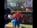 Spider-man dance