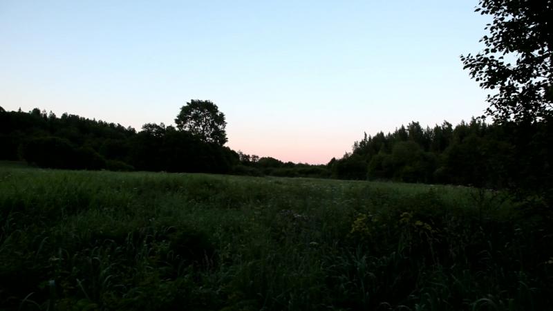 Короткая июньская ночь