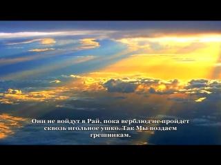 Как он красиво и до слез читает Коран. Сура 7 «аль Араф» (Ограды) аяты 40 47 Слушать всем!