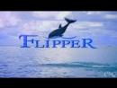 Флиппер сериал 1995