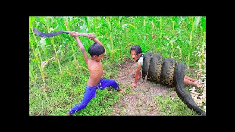 5 ДЕТЕЙ С ЖЕЛЕЗНЫМИ ЯЙЦАМИ, КОТОРЫЕ СПАСЛИ ЖИЗНИ ДРУГИМ