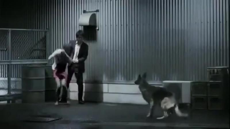 Ахренеть прикол!Не попадись.ха,ха,ха