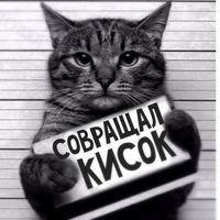 Олег Жилин, 24 года, Майкоп, Россия