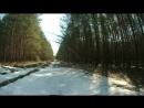Покатуха по весеннему лесу Stels 250 Enduro