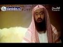 Жизнеописание посланника Аллаха. 3 из 30 — Рождение Пророка Мухаммада ﷺ.mp4