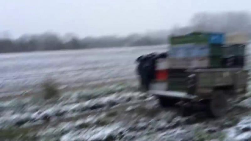 Зимой на поле. Условия и работа в Польше. Робота в Польщi
