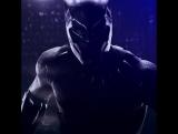 Чёрная Пантера - 10 дней