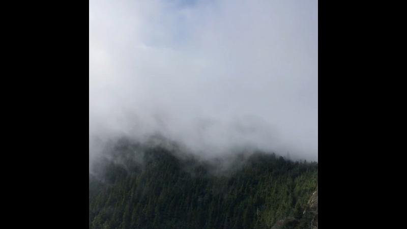 Mt LeConte 7000 feet elevation
