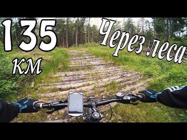 Покатушка на велосипеде через леса / 135км / YI 4K Action Camera Video / zhiyun z1 rider m / MTB