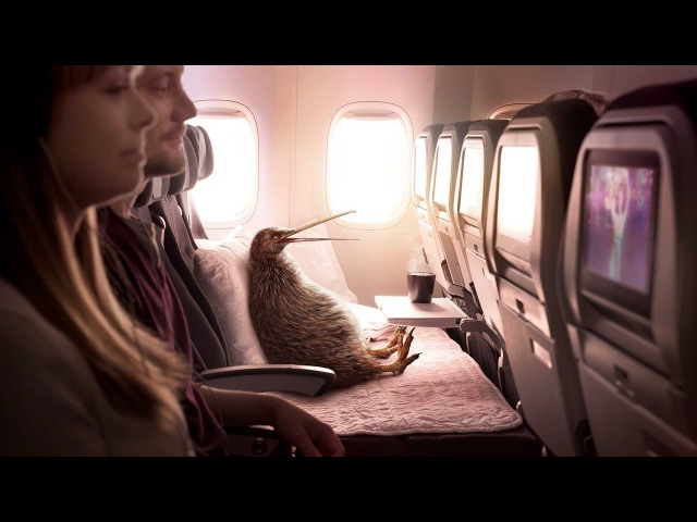 Pete's discovered a Better Way to Fly with Air New Zealand