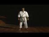 Ката - Тайкиоку Шодан - Масао Кавасое