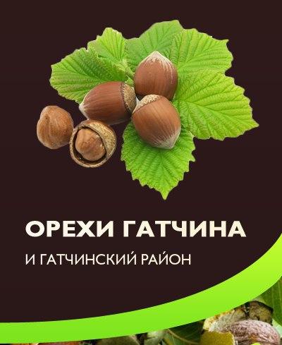 Орехи Гатчина