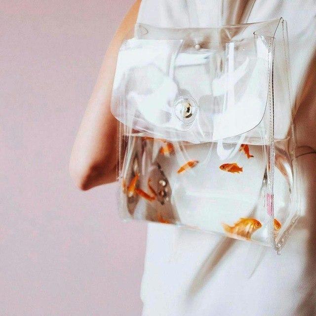 Прозрачные рюкзаки
