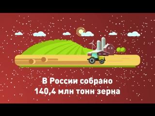 ТОП самых ярких достижений страны за 2017 год - В России собрано 140,4 млн тонн зерна