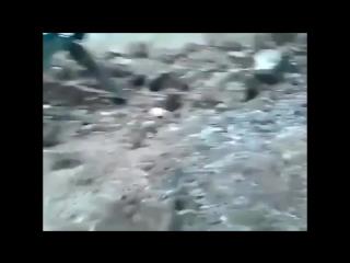 Боевые буряты путена: настамнет !