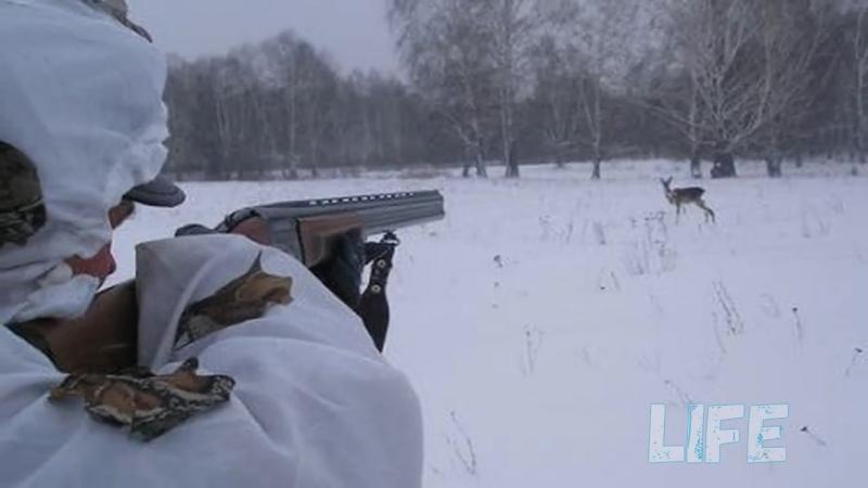 Как охотиться на косулю с подхода Секреты сибирских охотников!