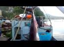 Двухметровую акулу поймали около пляжа в Ливадии Возможно фейк