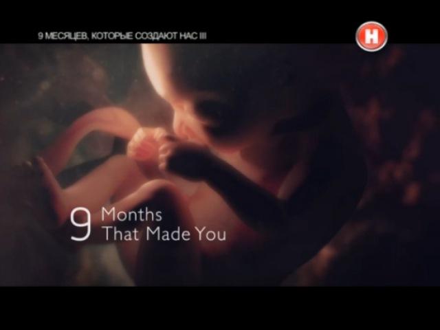 9 месяцев которые создают нас Фильм 3