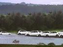 Jurassic Park Honda Civics