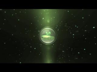 Новая Анимация Лого Лесная Поляна