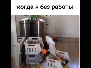 Когда дома сидишь безработный